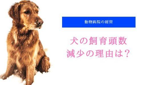 犬の 飼育頭数 が減少する理由(原因)とは?