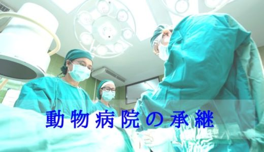 同じ動物病院の勤務医に承継させるメリットとデメリット